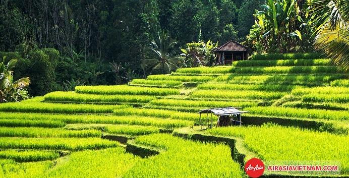 Khu du lịch Ubud