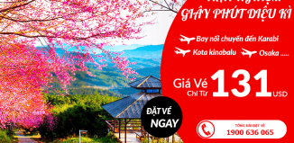 Air Asia khuyến mại vé máy bay từ 131 USD