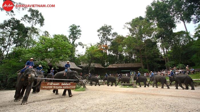 Trại voi Mae Sa