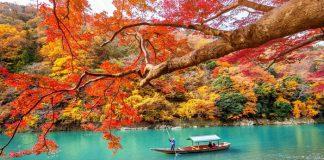 Vẻ đẹp mùa thu của cố đô Kyoto