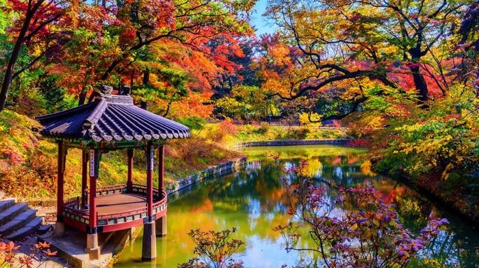 Du lịch Hàn Quốc tháng 9 chiêm ngưỡng vẻ đẹp mùa thu tại Xương Đức Cung