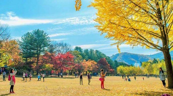 Du lịch Hàn Quốc tháng 9